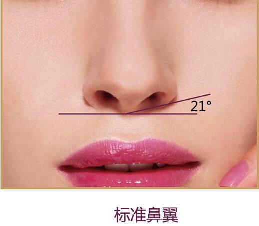 龙8国际网址龙8国际娱乐游戏做耳软骨垫鼻尖效果好吗